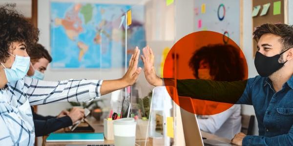 Diversidad, inclusión y sostenibilidad en organizaciones.